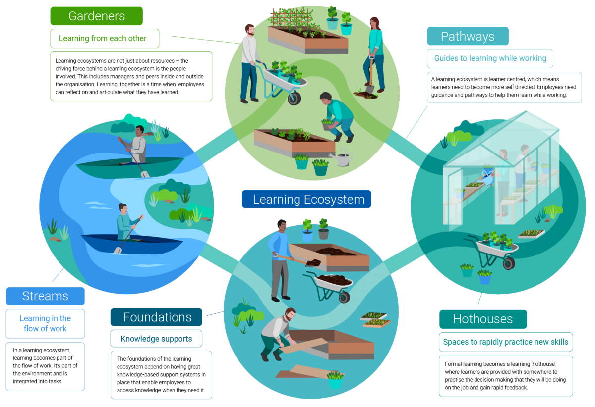 Learning ecosystem model